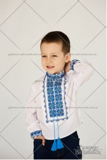 Сорочка для хлопчика «Дарій»